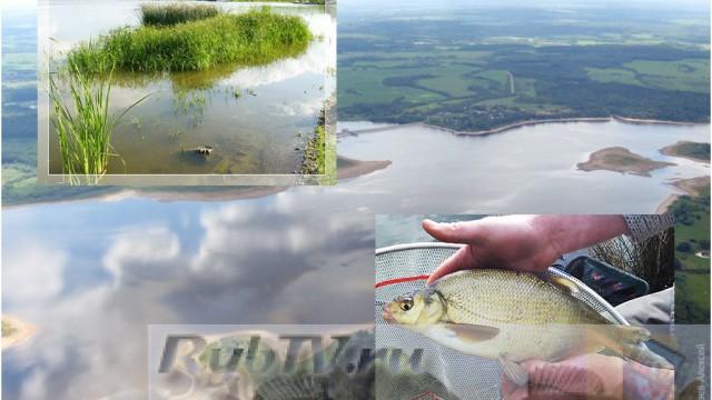 Донная ловля белой рыбы