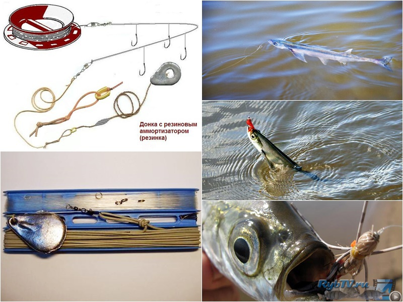 Как сделать резинку для рыбалки своими руками на судака 34