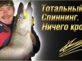 Константин Кузьмин