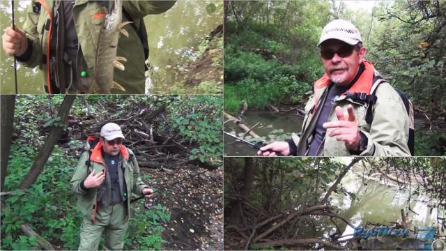 Спиннинг в джунглях Подмосковья — ловля щуки