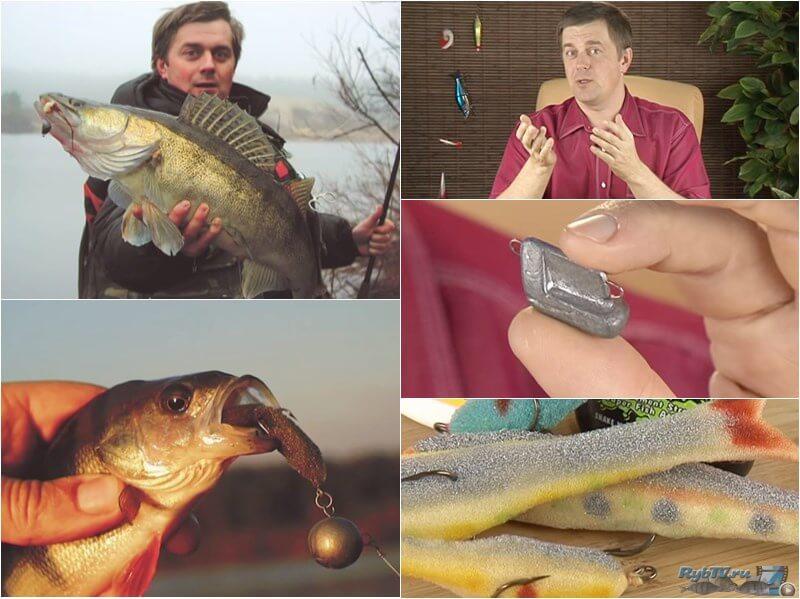 porolon-rybki