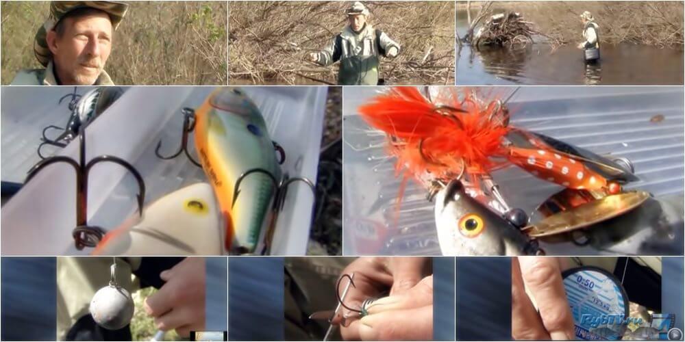 как ловить хищника