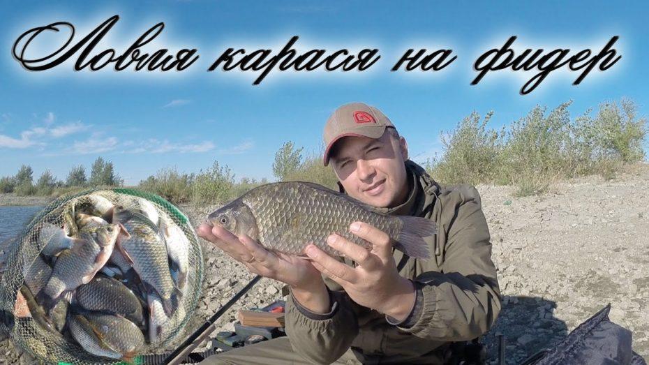 ловля крупного карася на озере видео